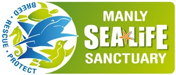Manly SEA LIFE Sanctuary - Accommodation Sydney